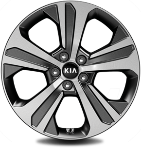 "235/55R 19"" Alloy wheel (Optional on EX)"