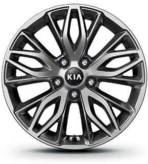 "215/55R 17"" Alloy Wheel"