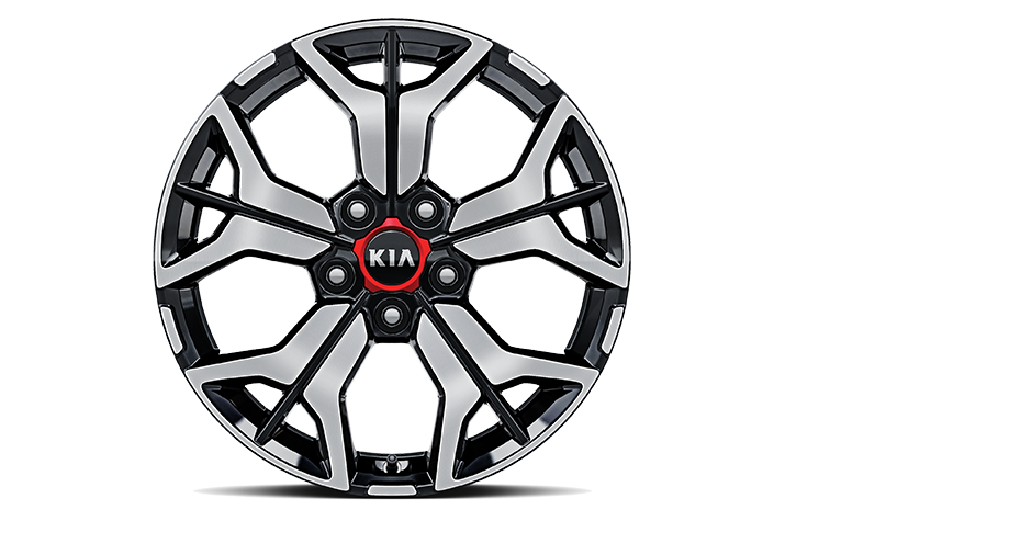Alloy wheel</br>(B type)