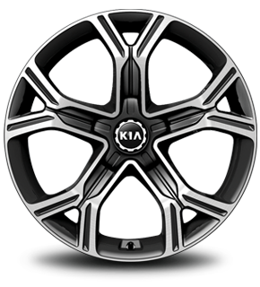 "19"" Alloy Wheel (B-type)"