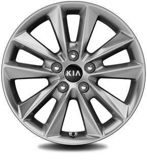 "235/65R 17"" Alloy wheel (Standard)"