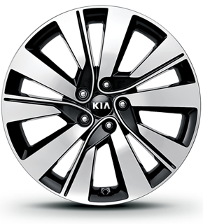 "19"" Alloy Wheel"