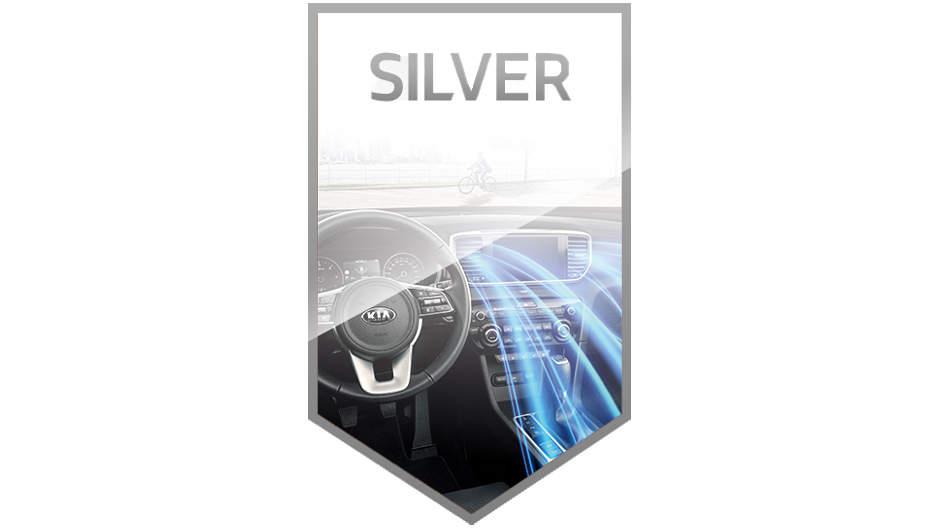 silver sanitisation