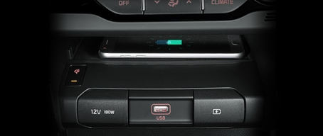 2020 Kia Niro EV Compatibility With Multiple Devices